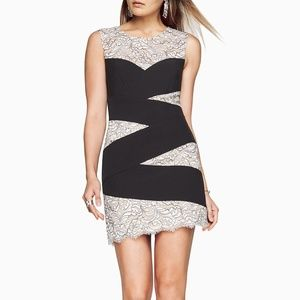 NWT $298 BCBG Maxazria Women 4 Mathilde Lace Dress